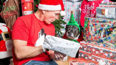 Animal obsessive spends £5k on hi5 bike equipment, clothes and toys for his pooch this xmas – and has spent nearly £60,000 over the hound's life Image