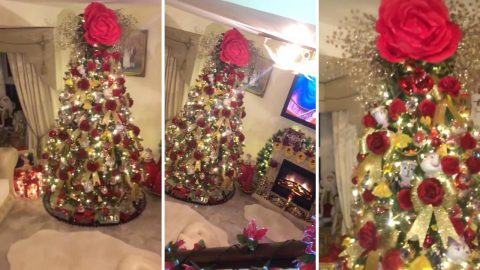 A tree as old as time! Crafty grandma spends a year creating magical Beauty and the Beast Christmas tree for Disney-mad granddaughter – because family couldn't afford to go to Disneyland Image