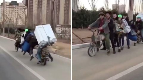 Bizarre motorbike made of huge log carries seven people and a fridge Image