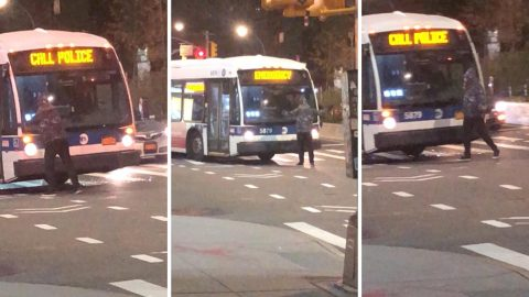 Bizarre moment man stands in front of bus and rips off its wing mirror and windscreen wiper Image