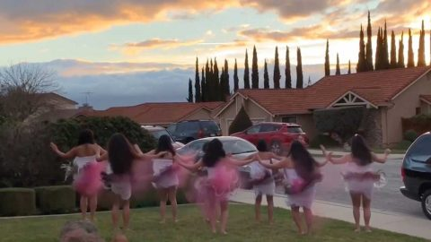 Tahitian-Style Gender Reveal Announces Baby Girl With Sensual Dance Image
