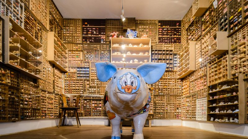Hogging The Limelight! Inside 29-room Museum Dedicated To Pigs - Which Used To Be Slaughterhouse Image