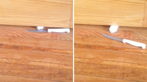 Are You Feline Ok? Grumpy Cat Slides Knife Under Bathroom Door To Protest Being Left Alone Image