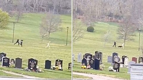 Streaker Runs Through Graveyard Before Being Tackled By Police Image