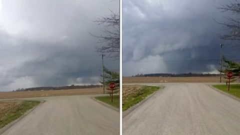 Homeowner Catches Huge Tornado Caught Forming In Distance Image