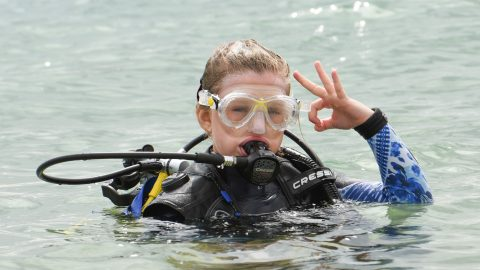 Brave Schoolgirl youngest In World To Free Dive With Sharks Image