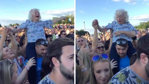 Not Your Ordinary Pension Day Trip: This Gran Was Caught On The Shoulders Of A Festival Goer At Trnsmt Image