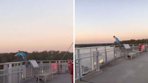 Touching Video Shows Man Stopping Woman About To Jump From Bridge Image