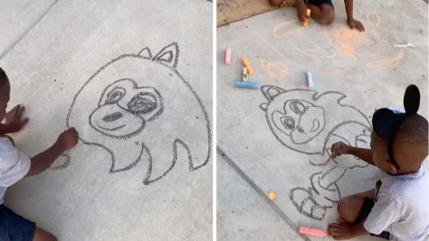 Five-year-old's Art Skills Go Viral By Free-drawing Sonic The Hedgehog On Pavement Image