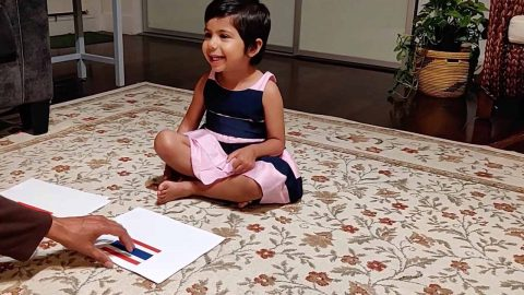 Talented Toddler Can Recall 29 Countries And Capitals On Demand Just By Looking At A Collection Of Flags Image