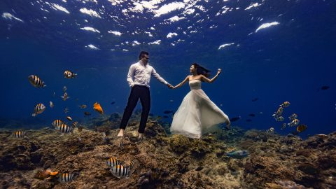 TIDE THE KNOT - MESMERISING UNDERWATER WEDDING CAUGHT ON CAMERA Image