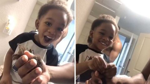 A CUT ABOVE: TODDLER HAS HILARIOUS REACTION TO DAD GIVING HIM FIRST HAIRCUT Image
