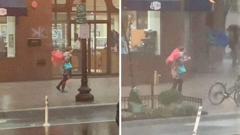 MONSOON WINDS MAKE WOMAN'S FLIMSY UMBRELLA REDUNDANT Image