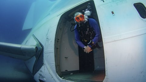 GOOD GREEF! – PLANE SUNK TO BECOME ARTIFICIAL REEF Image