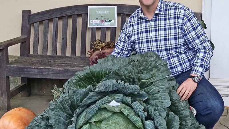THAT'S A TURNIP FOR THE BOOKS! GIANT VEG GROWING SCHOOLBOY SELECTED TO BE JUDGE IN INTERNATIONAL GARDENING COMPETITION Image