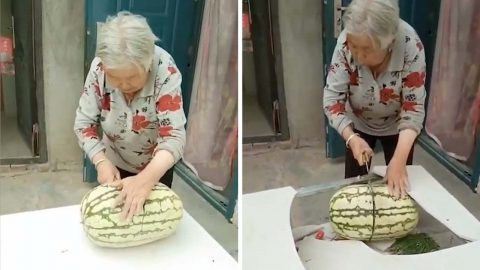 YOU'RE TWISTING MY MELON NAN: GRANDMA SMASHES TABLE WHILE CUTTING INTO GIANT WATERMELON Image