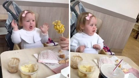 SCORN ON THE COB! TODDLER PULLS HILARIOUS FACES WHEN OFFERED CORN ON COB Image