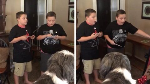 WRESTLING SUPERFAN TWINS FREAK OUT AFTER FINDING OUT THEY'RE GOING TO FIRST LIVE EVENT Image