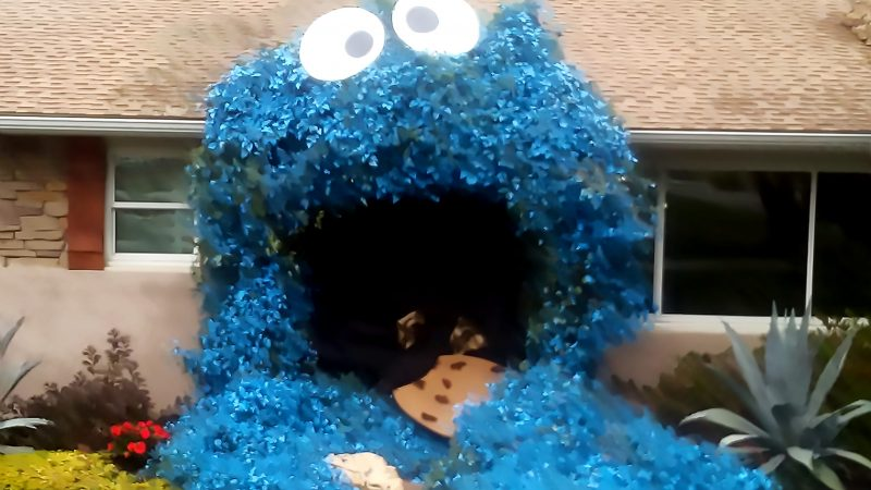 HALLOWEEN ENTHUSIAST GOES VIRAL FOR DECORATING GARDEN SHRUB AS THE COOKIE MONSTER Image