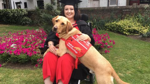 GOLDEN BOY! MEDICAL ASSISTANCE DOG GRADUATES ALONGSIDE OWNER AND RECEIVES HIS OWN CERTIFICATE – FOR BEING GOOD Image