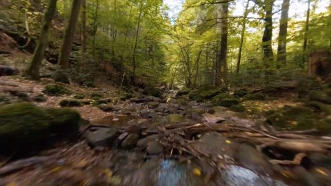DRONE FLIES ABOVE BUBBLING BROOK IN FOREST'S DEPTHS Image