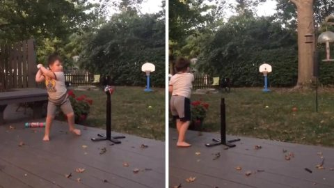 TRICK SHOT TODDLER: FOUR-YEAR-OLD SHOWS OFF AMAZING BASKETBALL TRICKSHOT SKILLS Image