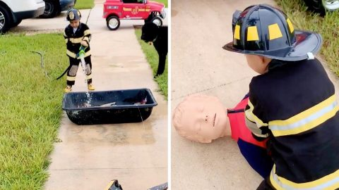 TODDLER PERFORMS MOCK FIREFIGHTER INTERVENTION AFTER BEING UPSET HE COULD NOT JOIN DAD ON A CALL Image