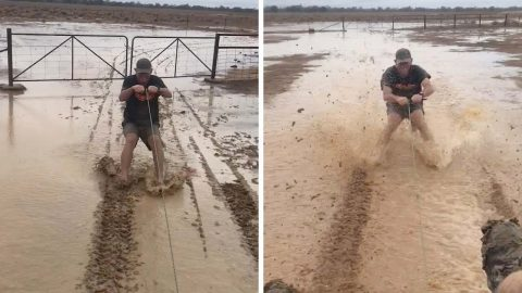 PAIR OF PALS CELEBRATE RAINFALL BY BAREFOOT SKIING THROUGH MUD BEHIND MINI TRACTOR Image