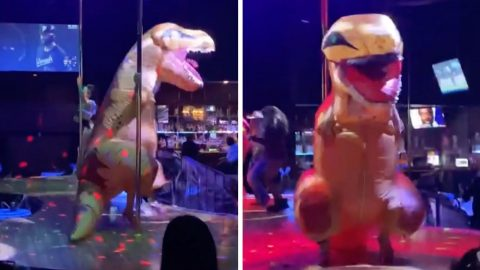 POLE-DANCING T-REX IS A ROARING SUCCESS IN HILARIOUS VIRAL VIDEO Image