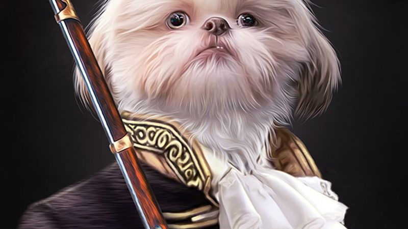 PAWSOME PAWTRAITS! ARTISTS TURNS BELOVED PETS INTO RENAISSANCE PAINTING Image