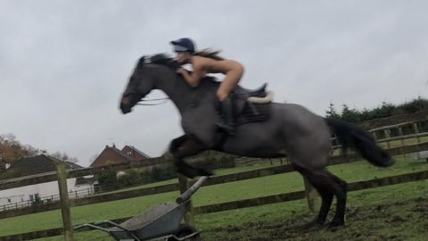 NEIGH-KED ATTRACTION! REAL-LIFE LADY GODIVA RIDES HORSE STARKERS Image