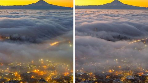 FOGGY TIMELAPSE CAPTURES RUSH HOUR FROM SEATTLE'S TALLEST BUILDING Image