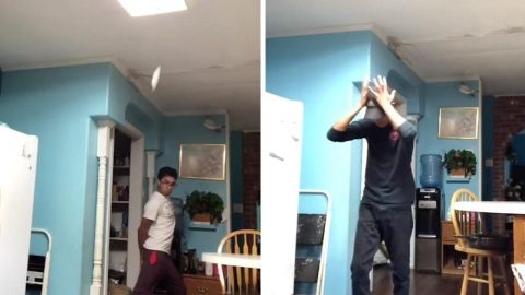 WHAT A SMASHING SUCCESS: TEEN DEMONSTRATES UNBREAKABLE KITCHENWARE IN HILARIOUS COMEDY VIDEOS Image