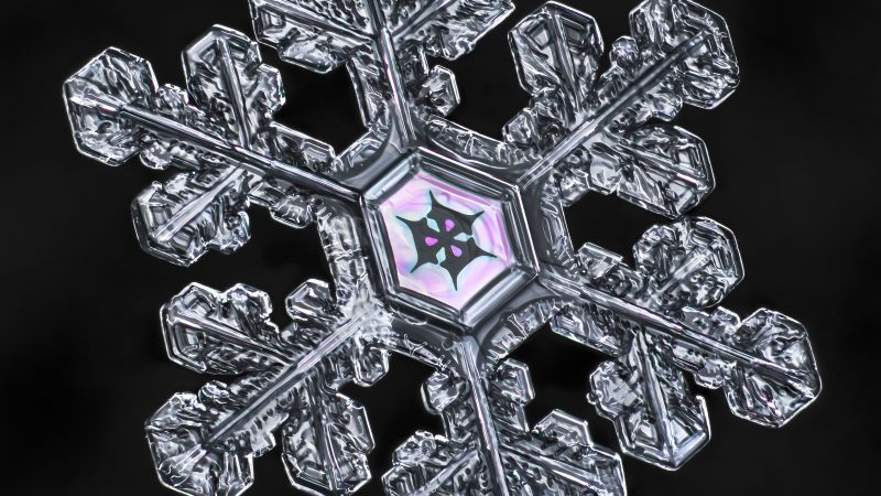 PALETTE IT SNOW! – PHOTOGRAPHER CAPTURES AMAZINGLY COLOURFUL SNOWFLAKES Image