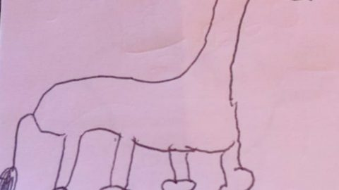 SCHOOLGIRL FINALLY REALISES WHY DRAWING OF GIRAFFE WITH KNOBBLY KNEES IS HILARIOUS FIVE YEARS LATER Image