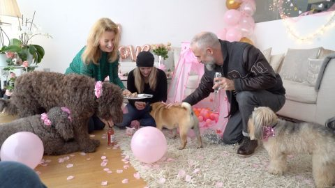 BARKING MAD? HIGH FLYING EVENTS ORGANISER QUITS JOB TO BE FULL TIME PARTY PLANNER – FOR DOGS Image