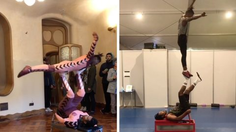 INCREDIBLE ACROBATS PERFORM GRAVITY DEFYING ROUTINES THAT WILL MAKE YOUR HEAD SPIN Image