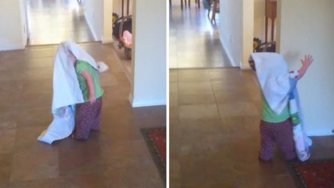 MUM SHARES HILARIOUS HOME VIDEO OF DAUGHTER SLAMMING HEADFIRST INTO A WALL Image