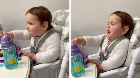 SASSY TODDLER TELLS HER GRANDMA OFF FOR DARING TO TRY AND GET A CUTE PICTURE OF HER Image