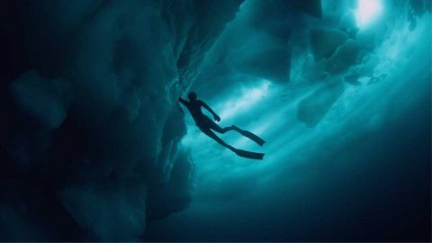 DIVER DEFIES -27C TEMPERATURES TO CAPTURE BREATH-TAKING SHOTS UNDER GREENLAND'S ICEBERGS Image