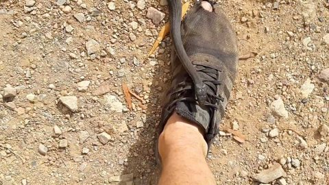 THERES A SNAKE IN MY BOOT! DEADLY SNAKE SLITHERS OVER MANS FOOT WHILST OUT WALKING Image
