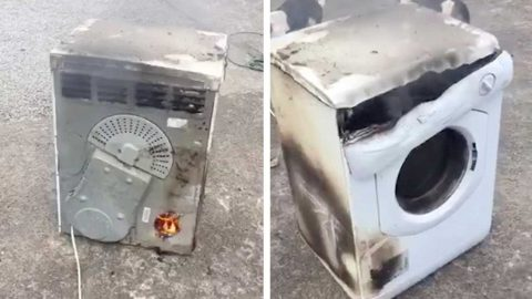 DAD HAD TO DRAG BURNING HOTPOINT TUMBLE DRYER OUT OF HIS HOUSE Image