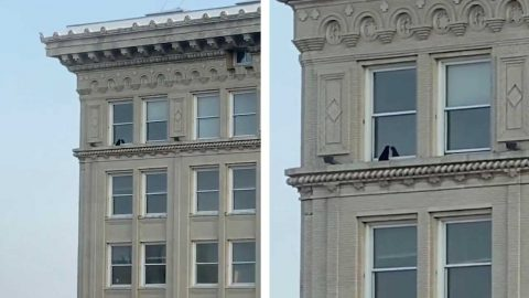 HAIR-RAISING MOMENT BRAVE CAT SITS UNFAZED ON WINDOW LEDGE AT 14TH FLOOR OF BUILDING Image