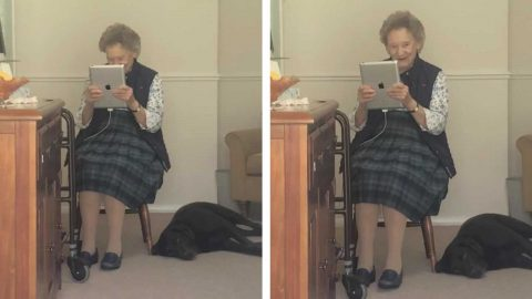 ADORABLE MOMENT THIS GRANDMA GETS AN IPAD SO SHE CAN FACETIME HER FAMILY SHE HASN'T SEEN IN MONTHS Image
