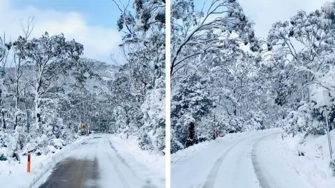 ROAD BECOMES A SNOWY WINTER WONDERLAND Image