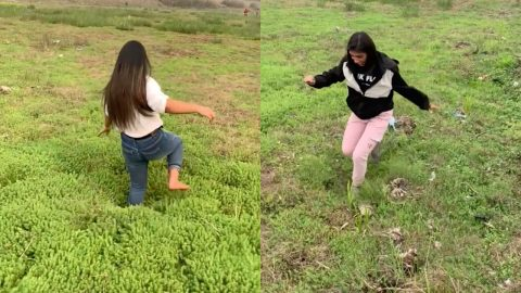 MIND-BOGGLING VIDEO SHOWS GIRLS RUNNING ON SOGGY GROUND THAT MOVES UNDER FEET Image