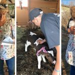 All I want for christmas is moo: Adorable moment a man with special needs' xmas wishes come true, as Mr and Mrs Claus deliver him four baby cows in emotional surprise